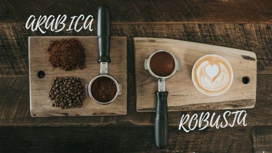 Arabica vs- robusta - Melyik a jobb? Fitlife cukormentes cukrászda